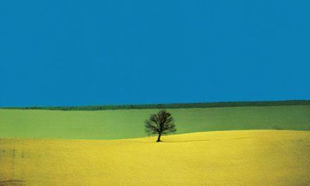 Landscape – Franco Fontana
