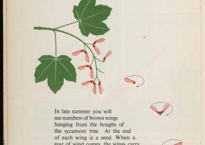 Illustrations techniques pour enfants - Gerd Arntz 1948 (6)