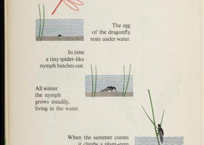 Illustrations techniques pour enfants - Gerd Arntz 1948 (8)