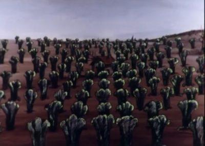 Les escargots - René Laloux 1965 (12)