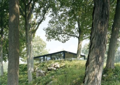 The glass house - Philip Johnson 1948 (12)
