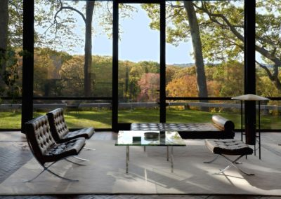 The glass house - Philip Johnson 1948 (6)