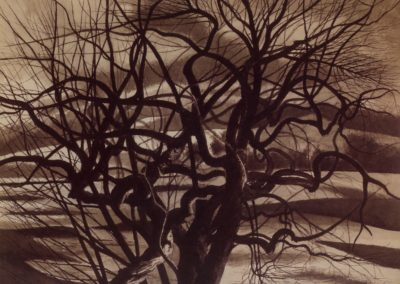 Arbres, blanc et noir - Léon Spilliaert (1941)