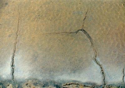 Fleurs de sel - Paul Morin 1977 (11)