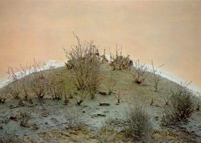 Fleurs de sel - Paul Morin 1977 (3)