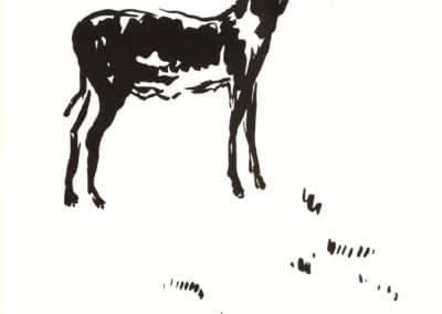Histoires naturelles - Pierre Bonnard 1904 (16)