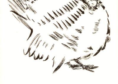 Histoires naturelles - Pierre Bonnard 1904 (18)