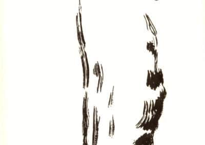 Histoires naturelles - Pierre Bonnard 1904 (19)