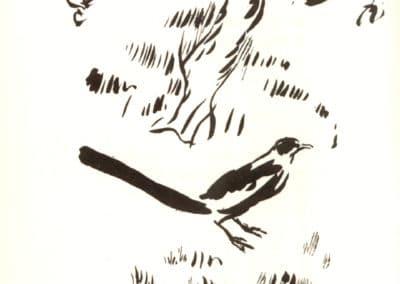 Histoires naturelles - Pierre Bonnard 1904 (2)
