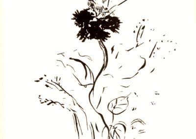 Histoires naturelles - Pierre Bonnard 1904 (8)