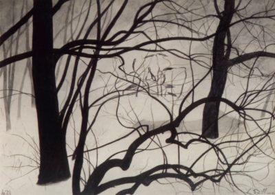 Jeunes pousses parmi les arbres - Léon Spilliaert(1933)