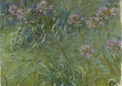 Agapanthes - Claude Monet (1914)
