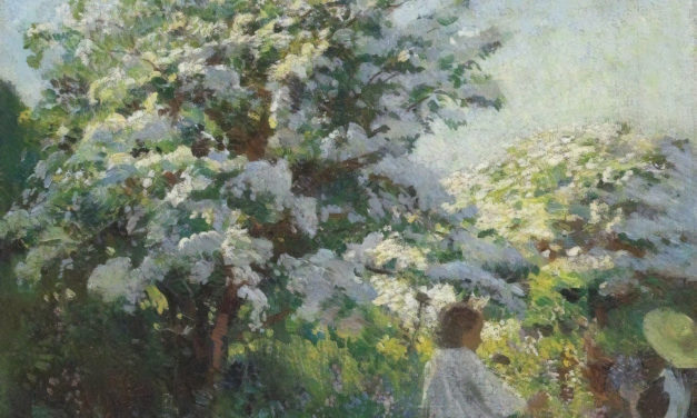 Les roselières – Fauve
