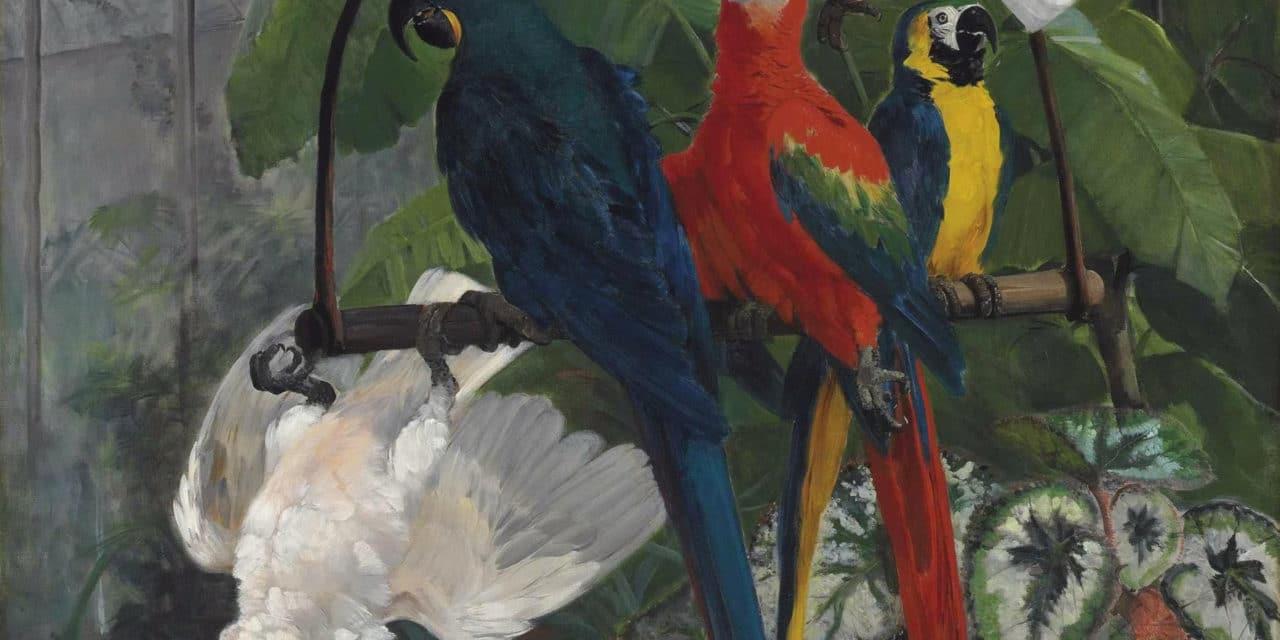 Un oiseau sans couleur et sans nom – Jean-Joseph Rabearivelo