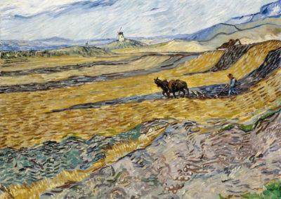 Champs - Vincent van Gogh (1889)