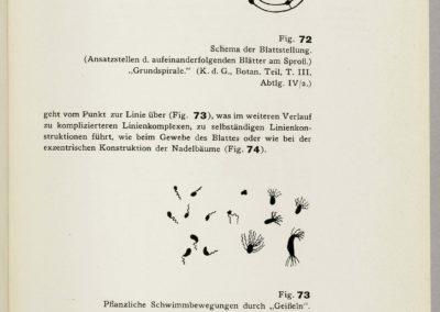 Point et ligne sur plan - Vassily Kandinsky 1926 (108)