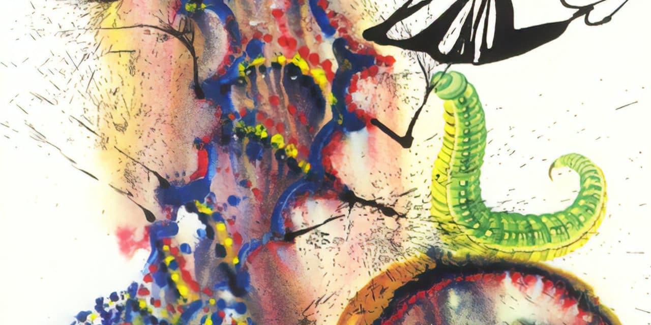 Alice au pays des merveilles – Salvador Dali