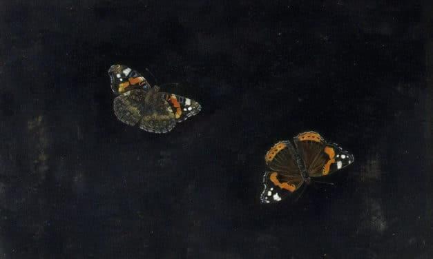 Papillon – Blaise Cendrars