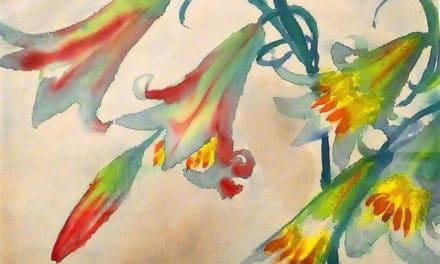 Fleurs d'aurore – Nérée Beauchemin