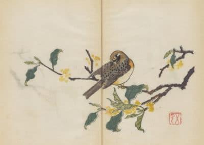 Shi zhu zhai zhai shu hua hua pu – Hu Zhengyan 1633 (14)