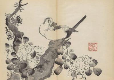 Shi zhu zhai zhai shu hua hua pu – Hu Zhengyan 1633 (18)
