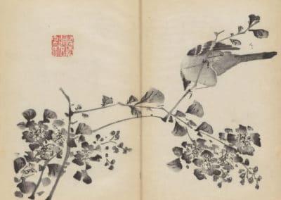 Shi zhu zhai zhai shu hua hua pu – Hu Zhengyan 1633 (39)