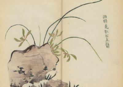 Shi zhu zhai zhai shu hua hua pu – Hu Zhengyan 1633 (42)