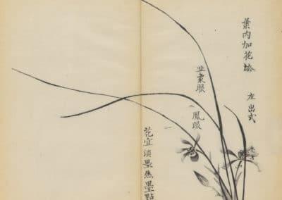 Shi zhu zhai zhai shu hua hua pu – Hu Zhengyan 1633 (44)
