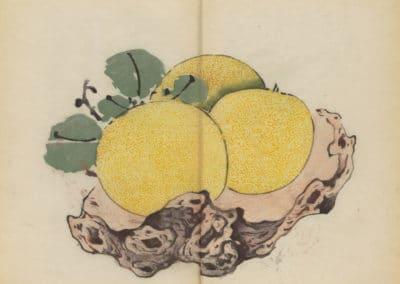 Shi zhu zhai zhai shu hua hua pu – Hu Zhengyan 1633 (66)