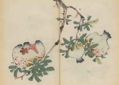 Shi zhu zhai zhai shu hua hua pu – Hu Zhengyan 1633 (68)