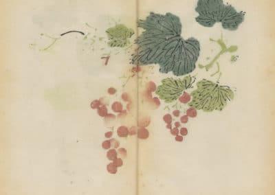 Shi zhu zhai zhai shu hua hua pu – Hu Zhengyan 1633 (71)