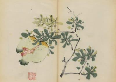 Shi zhu zhai zhai shu hua hua pu – Hu Zhengyan 1633 (76)