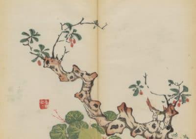 Shi zhu zhai zhai shu hua hua pu – Hu Zhengyan 1633 (77)