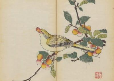 Shi zhu zhai zhai shu hua hua pu – Hu Zhengyan 1633 (78)