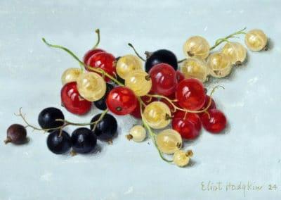 Berries - Eliot Hodgkin (1973)