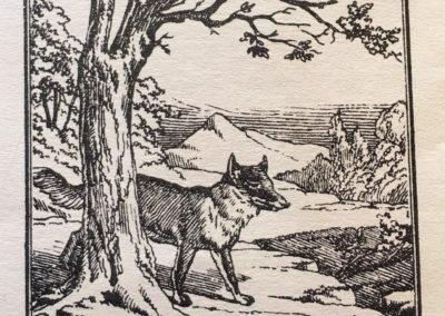 Devinettes d'Epinal - 1900 (15)