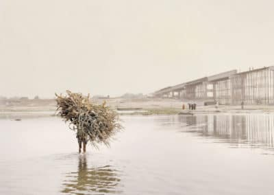 Living entity - Giulio di Sturco 2015 (15)