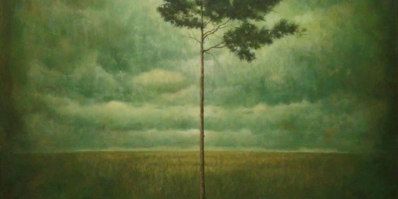 Notre arbre – Dox