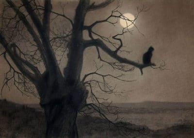 Chat au clair de lune - Theophile Steinlen (1940)