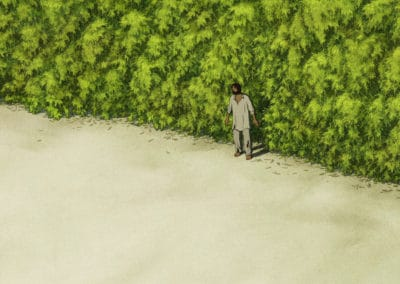 La tortue rouge - Michael Dudok de Wit 2016 (11)