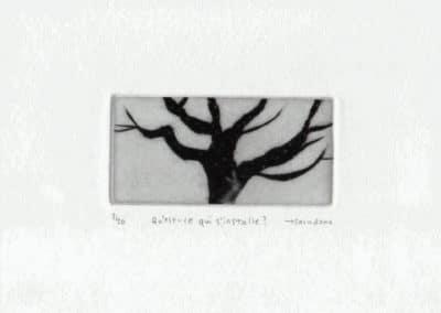Le monde poétique - Naoko Tsurudome 2009 (25)