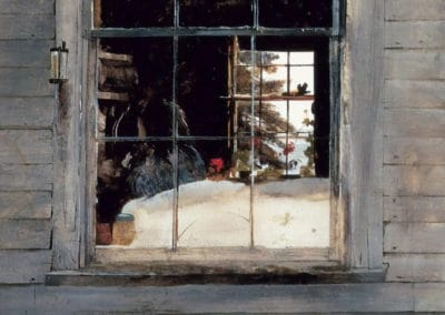 Geraniums - Andrew Wyeth (1960)
