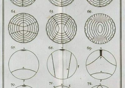 Figures - Ernst Chladni 1787 (2)