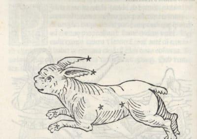 Poeticon astronomicon - Hygin 1482 (11)