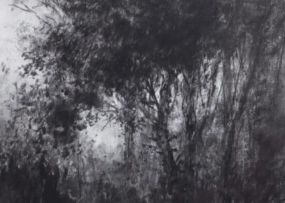 Une terre hors du temps - Jean-Pierre Ugarte 1990 (10)