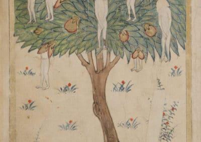 Le livre des merveilles - Abd al-Hasan Al-Isfahani 1390 (22)