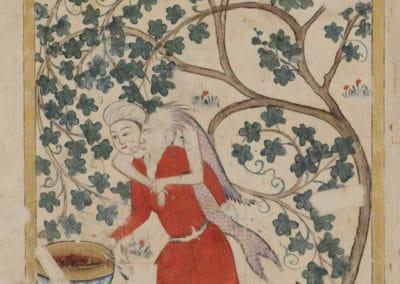 Le livre des merveilles - Abd al-Hasan Al-Isfahani 1390 (25)