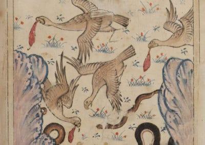 Le livre des merveilles - Abd al-Hasan Al-Isfahani 1390 (29)