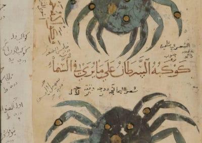 Le livre des merveilles - Abd al-Hasan Al-Isfahani 1390 (44)