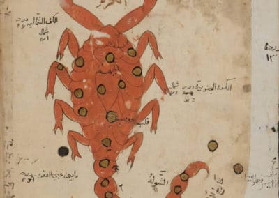 Le livre des merveilles - Abd al-Hasan Al-Isfahani 1390 (47)